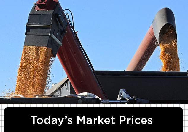 todays-grain-prices
