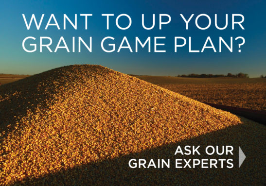 Contact us to UP your Grain Game Plan
