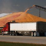grain safety